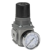 Compact Pressure Regulator | P32R Series | P32RB14BNGP