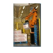 Palletizer / Robotic System | Packaging and Filling Systems