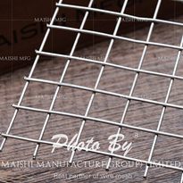 Stainless Steel Welded Mesh | 304