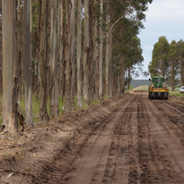 PolyCom harvesting road reaps benefits in coastal Victoria