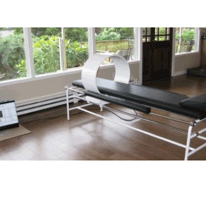 Pulsed Electromagnetic Therapy System | Cellwell Dynamic Energy System