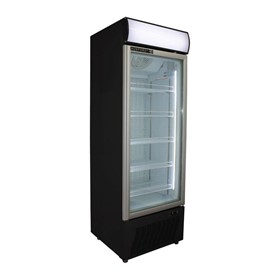 Upright Commercial Display Freezer | HF360-B
