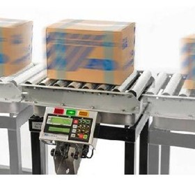 EZI-Check Auto Carton CheckWeighing System