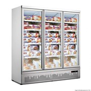 F.E.D Thermaster Triple Door Supermarket Freezer | LG-1500GBMF