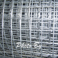 Welded Wire Mesh Rolls and Panels