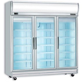 Flat Glass 1507Lt. LED Upright Display Freezers - UF1500LF