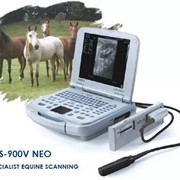 Portable Veterinary Ultrasound Machine | CTS-900V