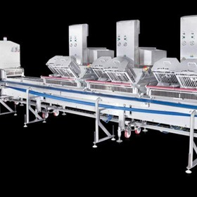Linear Conveyor Packaging Machine | SP90