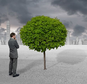 Creating efficient environmental management