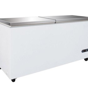 Chest Freezer with Stainless Steel Lids | F.E.D BD598F