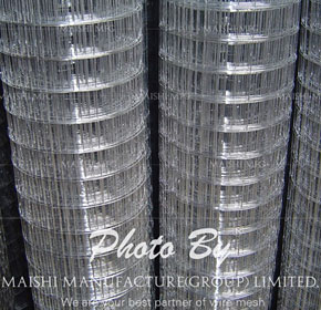 Galvanized Welded Wire Mesh For Fence