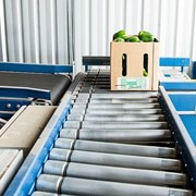 Food/Fruit Handling Systems | Distribution process