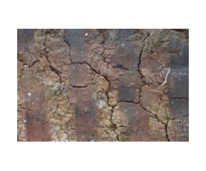 the geology of Reactive Soils