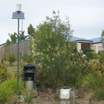 Urban stormwater management