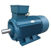 TECO Monarch Cast Iron Three Phase Motor