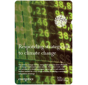 Responding strategically to climate change