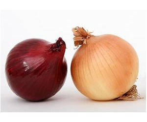 Sweet onions have lower acid and higher sugarlevels than other onions.