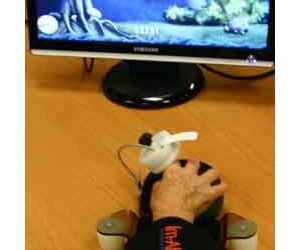 The Gerbil is a giant computer mouse with custom-designed computer games for people with upper limb and cognitive movement disorders.
