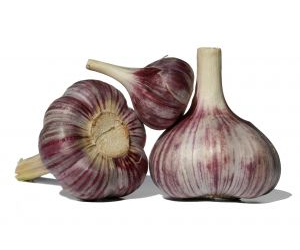 Researchers found that aged garlic extract is more effective than the raw or cooked varieties in controlling hypertension.