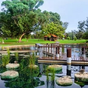 Algae Treatment for Lakes, Ponds and Parks