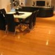 Bamboo flooring or hardwood floors? Pick your choice
