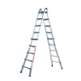 Telescopic Access Ladder | Classic Model 22