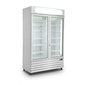 2 Door Upright Freezer