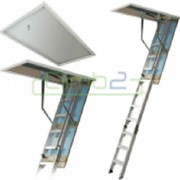 Climb2 Fold Down/Attic Ladder - Premium LD782.03