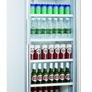 Single Glass Door Fridge | Thermocool 430L