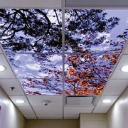 Custom Hospital Overheads | Sereneview®