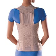 Posture and Spinal Support