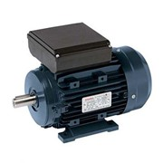 TECO Monarch Alloy Single Phase Motor
