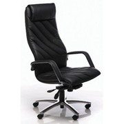 Ergonomic Office Chair | Alpha