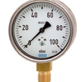 Capsule Pressure Gauge, Copper Alloy, Model 612.20