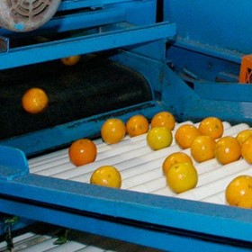 Mandarin Picking System
