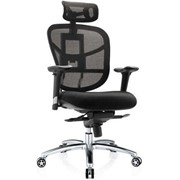 Ergonomic Office Chair | Optima Executive