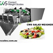 Food Weighing Scales | Salad Weigher