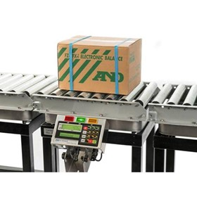 Checkweigher Scale | EZI-Check