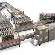 Packaging System for Biscuits