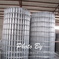 Hot Dipped Before Galvanized Welded Wire Mesh Rolls