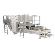 Food Sorting Machines | ADR EXOS