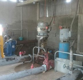 Efficiency and safety first for meat processor's pump