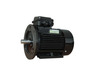 900rpm Foot & Flange Mount RCG EF Severe Duty Metric Frame Motors