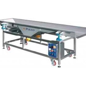 Grape Receival Equipment | Vibrating Tables
