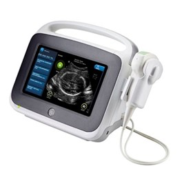 Portable Ultrasound | Vscan Access