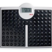 Digital High-Capacity Flat Scales