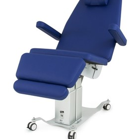 Evolution Procedure Chair