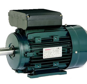 Monarch Single Phase Induction Motor | TECO | Squirrel Cage