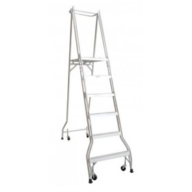 6 Step Platform Ladder | Monstar