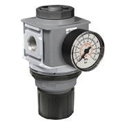 Pressure Regulator | P33R Series | P33RA14BNGP